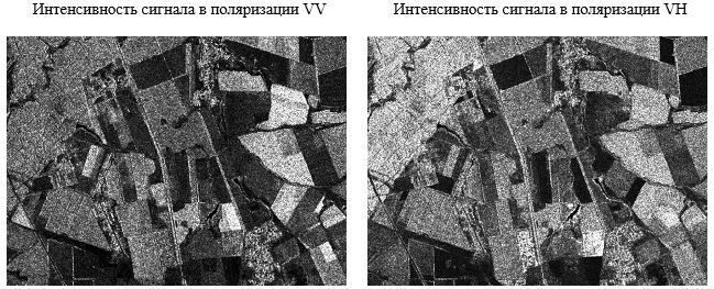 Интенсивность сигнала в поляризации VV и VH