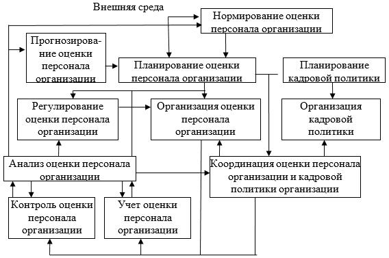Модель подпроцесса управления оценкой персонала организации